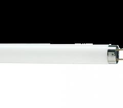 F32T8/TL950
